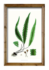 Wooden Frame Poster Art on Blackboard Wall Decoration